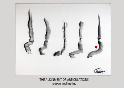 THE ALIGNMENT OF ARTICULATIONS